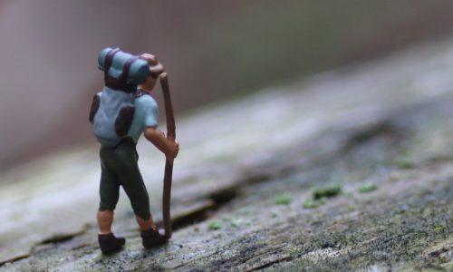 Minis im Wald